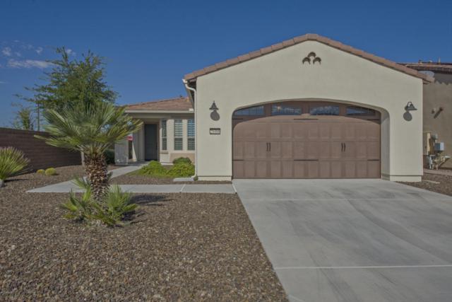 28466 N 127TH Lane, Peoria, AZ 85383 (MLS #5661426) :: The Worth Group