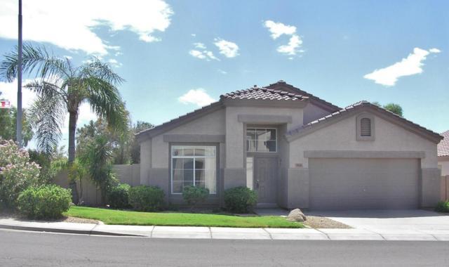 813 W Hemlock Way, Chandler, AZ 85248 (MLS #5661467) :: Revelation Real Estate