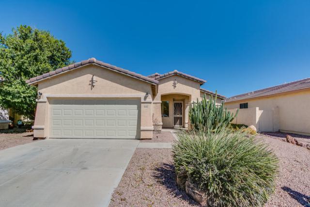 11540 W Cottonwood Lane, Avondale, AZ 85392 (MLS #5661608) :: Lifestyle Partners Team