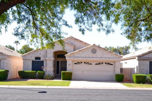 14463 W Buffalo Trail, Surprise, AZ 85374 (MLS #5661764) :: Desert Home Premier