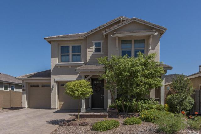 13252 W Copperleaf Lane, Peoria, AZ 85383 (MLS #5661791) :: The Laughton Team