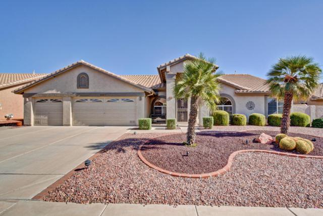 8921 W Wescott Drive, Peoria, AZ 85382 (MLS #5661844) :: Desert Home Premier