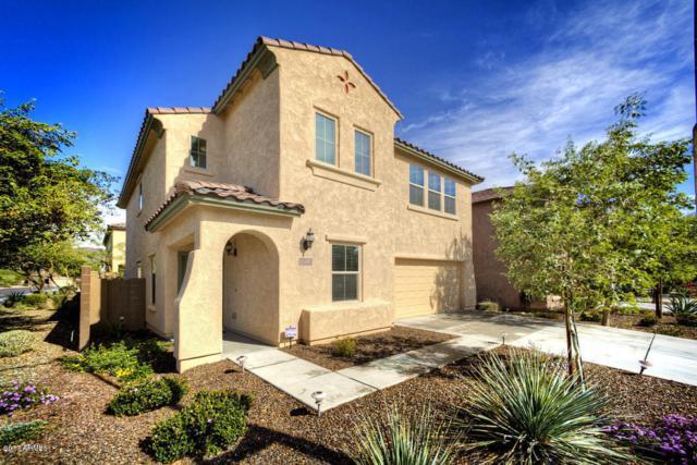 5440 W Hobby Horse Drive, Phoenix, AZ 85083 (MLS #5661944) :: The Laughton Team