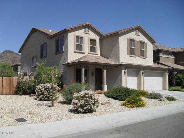5144 W Saddlehorn Road, Phoenix, AZ 85083 (MLS #5661981) :: The Laughton Team