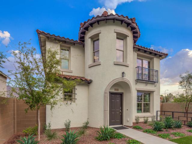29224 N 123RD Lane, Peoria, AZ 85383 (MLS #5662009) :: The Laughton Team