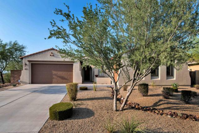 1812 W Horsetail Trail, Phoenix, AZ 85085 (MLS #5662022) :: Santizo Realty Group