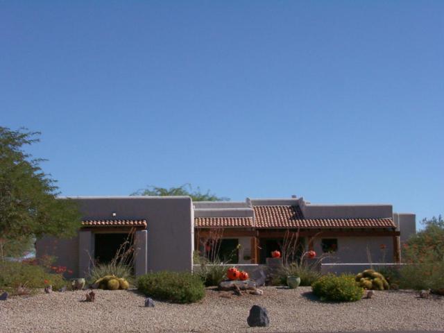 6095 E Fleming Springs Road, Cave Creek, AZ 85331 (MLS #5662035) :: Lifestyle Partners Team