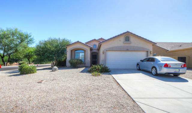 3189 E Superior Road, San Tan Valley, AZ 85143 (MLS #5662085) :: The Everest Team at My Home Group