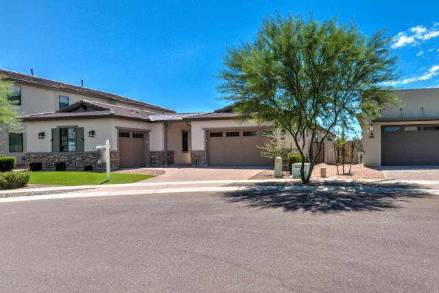 3793 E Canyon Place, Chandler, AZ 85249 (MLS #5662108) :: Lifestyle Partners Team