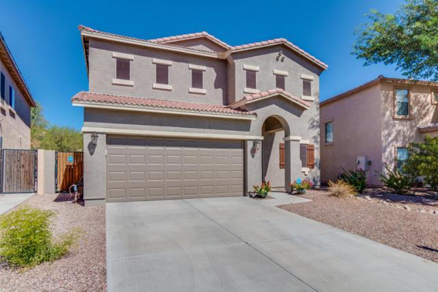 3718 W Whitman Drive, Anthem, AZ 85086 (MLS #5662119) :: Desert Home Premier