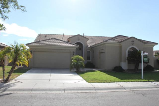 3720 S Mcclelland Drive, Chandler, AZ 85248 (MLS #5662138) :: Lifestyle Partners Team