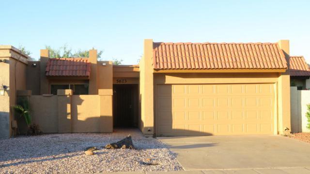 5623 S Wilson Street, Tempe, AZ 85283 (MLS #5662184) :: Lifestyle Partners Team