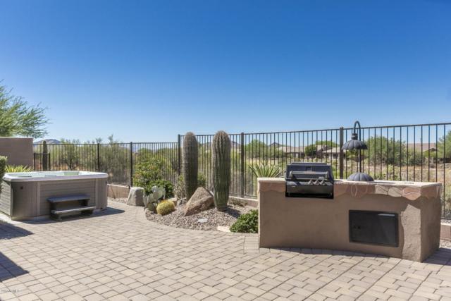 40916 N Noble Hawk Way, Anthem, AZ 85086 (MLS #5662190) :: Desert Home Premier