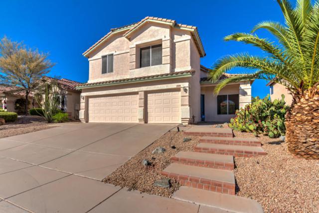 1026 E Hiddenview Drive, Phoenix, AZ 85048 (MLS #5662206) :: Lux Home Group at  Keller Williams Realty Phoenix