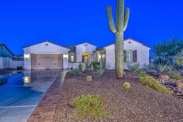 12742 W Calle De Pompas, Peoria, AZ 85383 (MLS #5662209) :: The Laughton Team