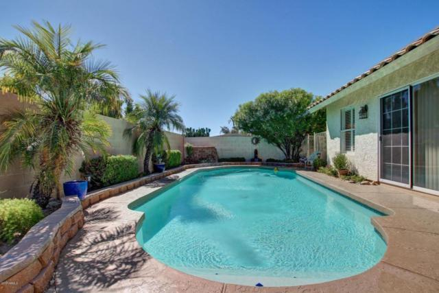 675 S Vine Street, Chandler, AZ 85225 (MLS #5662337) :: Lifestyle Partners Team