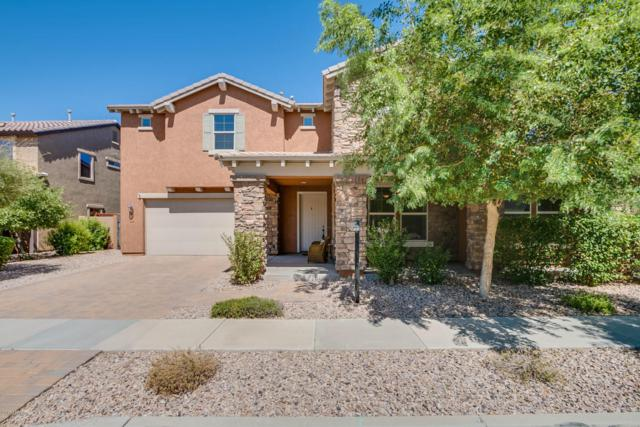 3546 E Shannon Street, Gilbert, AZ 85295 (MLS #5662360) :: Lux Home Group at  Keller Williams Realty Phoenix