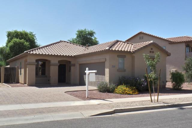 4533 E Harrison Street, Gilbert, AZ 85295 (MLS #5662370) :: Lifestyle Partners Team