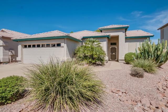 1116 W Tremaine Avenue, Gilbert, AZ 85233 (MLS #5662402) :: Lifestyle Partners Team
