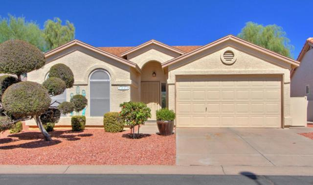 1920 E Winged Foot Drive, Chandler, AZ 85249 (MLS #5662450) :: Lifestyle Partners Team