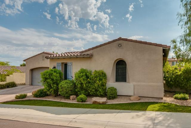 26035 N 85TH Drive, Peoria, AZ 85383 (MLS #5662474) :: The Laughton Team