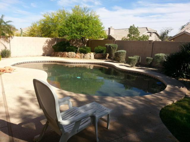 2125 E Taxidea Way, Phoenix, AZ 85048 (MLS #5662511) :: RE/MAX Infinity
