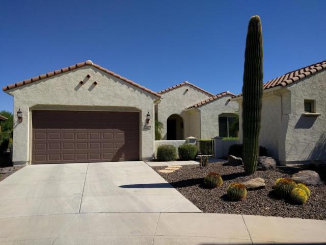 20453 N 264TH Avenue, Buckeye, AZ 85396 (MLS #5662524) :: Desert Home Premier