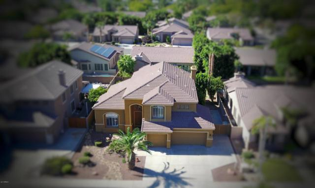 7265 W Quail Avenue, Glendale, AZ 85308 (MLS #5662525) :: The Laughton Team