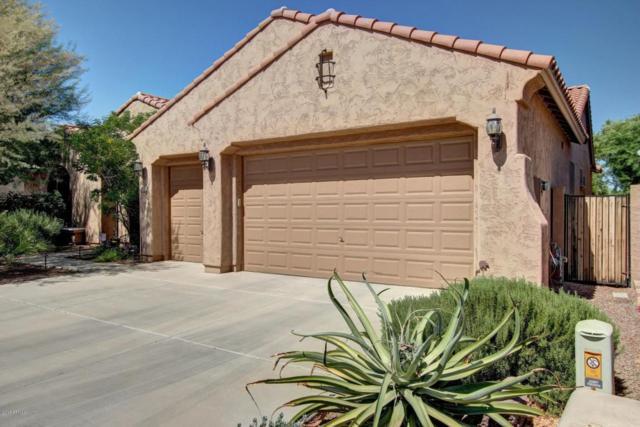 17928 W Echo Lane, Waddell, AZ 85355 (MLS #5662549) :: The AZ Performance Realty Team