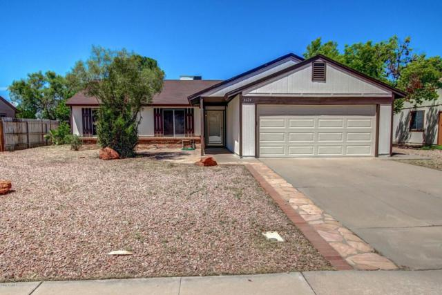 4624 W Gary Drive, Chandler, AZ 85226 (MLS #5662558) :: RE/MAX Infinity