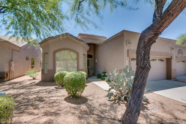 6047 S Twisted Acacia Way, Gold Canyon, AZ 85118 (MLS #5662562) :: The Pete Dijkstra Team