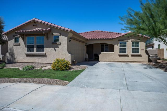 27514 N 92nd Lane, Peoria, AZ 85383 (MLS #5662567) :: The Everest Team at My Home Group