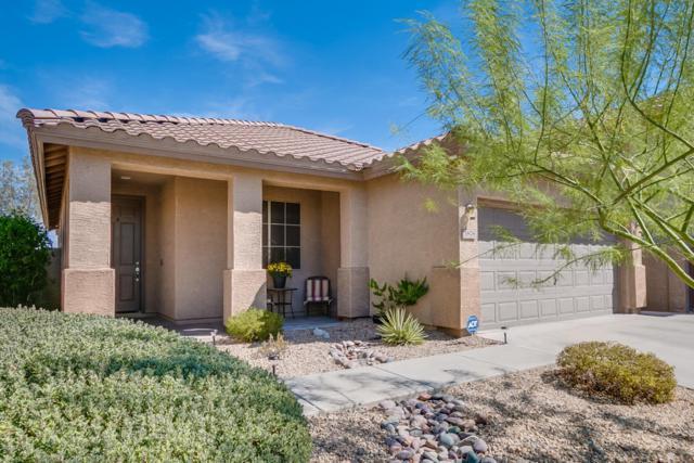3878 W Ashton Drive, Anthem, AZ 85086 (MLS #5662570) :: Desert Home Premier