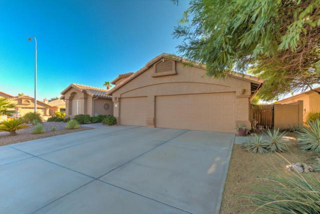 1217 S Longmore Court, Chandler, AZ 85286 (MLS #5662603) :: RE/MAX Infinity