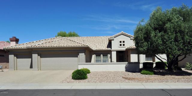 16242 W Windcrest Drive, Surprise, AZ 85374 (MLS #5662645) :: Desert Home Premier