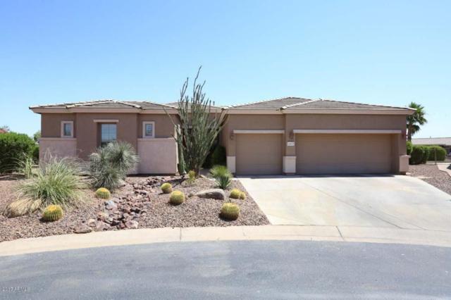 19815 N Puffin Drive, Maricopa, AZ 85138 (MLS #5662673) :: Yost Realty Group at RE/MAX Casa Grande
