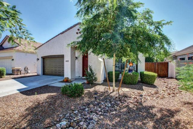 4255 E Marshall Avenue, Gilbert, AZ 85297 (MLS #5662743) :: Lux Home Group at  Keller Williams Realty Phoenix