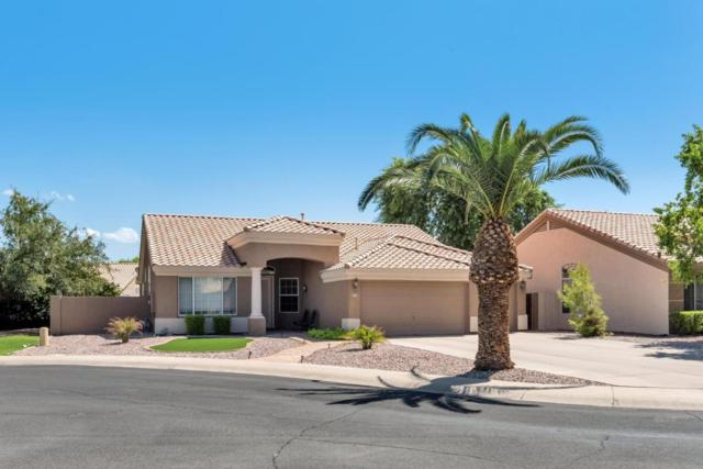 507 S Catalina Street, Gilbert, AZ 85233 (MLS #5662768) :: Lux Home Group at  Keller Williams Realty Phoenix