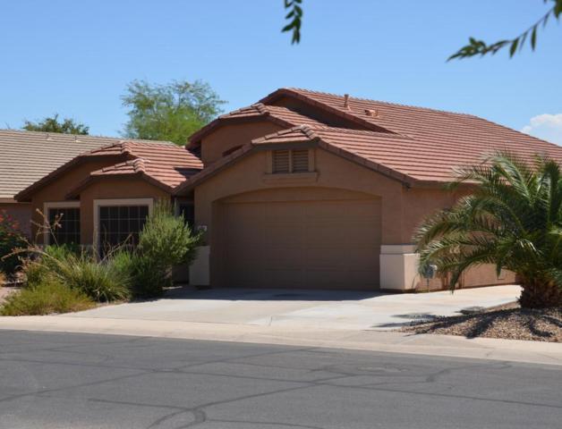43411 W Courtney Drive, Maricopa, AZ 85138 (MLS #5662773) :: Revelation Real Estate