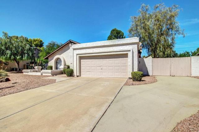 16026 N 52ND Place, Scottsdale, AZ 85254 (MLS #5662789) :: Lux Home Group at  Keller Williams Realty Phoenix