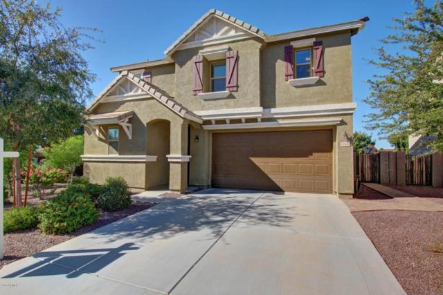 3502 E Bartlett Drive, Gilbert, AZ 85234 (MLS #5662804) :: Lux Home Group at  Keller Williams Realty Phoenix