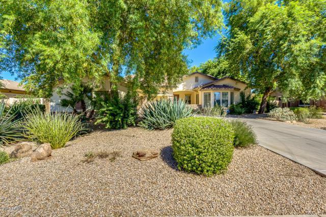 630 E Fieldstone Place, Chandler, AZ 85249 (MLS #5662805) :: Revelation Real Estate