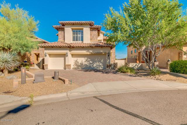 6828 E Portia Street, Mesa, AZ 85207 (MLS #5662832) :: The Kenny Klaus Team