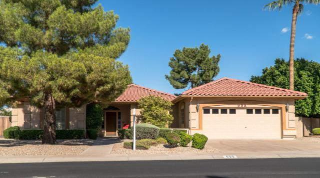 533 S Bay Shore Boulevard, Gilbert, AZ 85233 (MLS #5662833) :: Lux Home Group at  Keller Williams Realty Phoenix