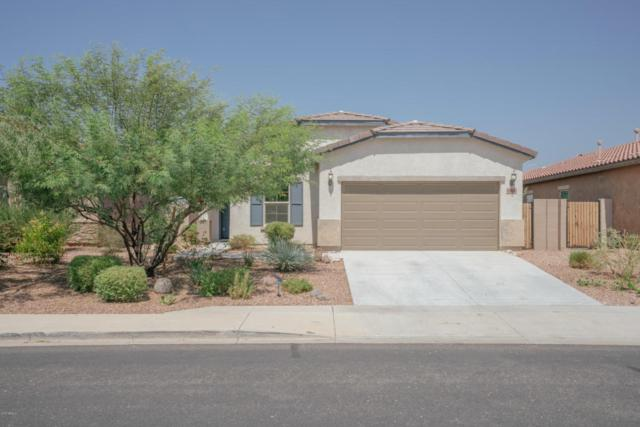 10800 W Cottontail Lane, Peoria, AZ 85383 (MLS #5662866) :: The Everest Team at My Home Group