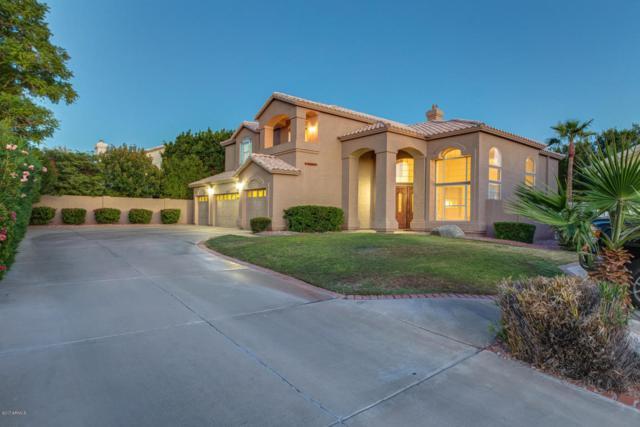 14233 N 16TH Place, Phoenix, AZ 85022 (MLS #5662872) :: Sibbach Team - Realty One Group