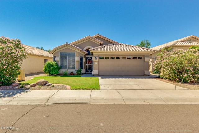 4521 E Dry Creek Road, Phoenix, AZ 85044 (MLS #5662873) :: RE/MAX Infinity