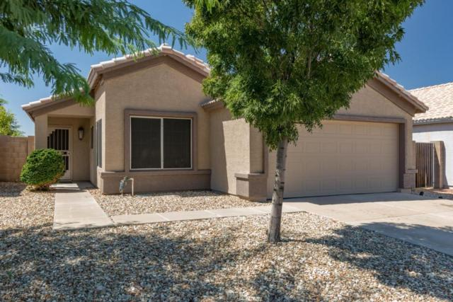 24606 N 37TH Lane, Glendale, AZ 85310 (MLS #5662916) :: Lux Home Group at  Keller Williams Realty Phoenix