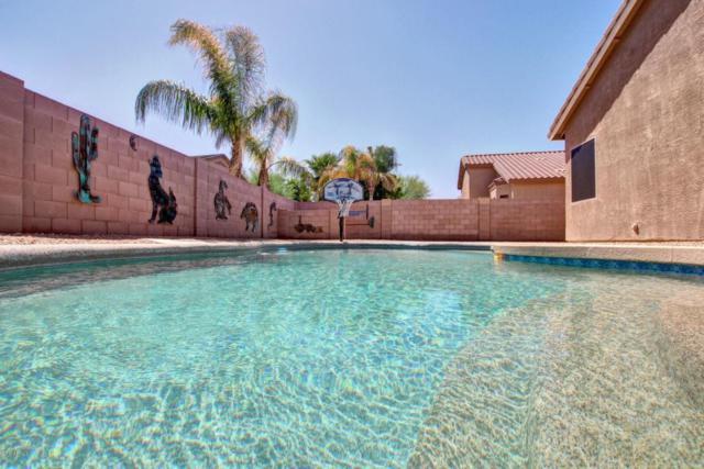 6145 S Teresa Drive, Chandler, AZ 85249 (MLS #5662932) :: Revelation Real Estate