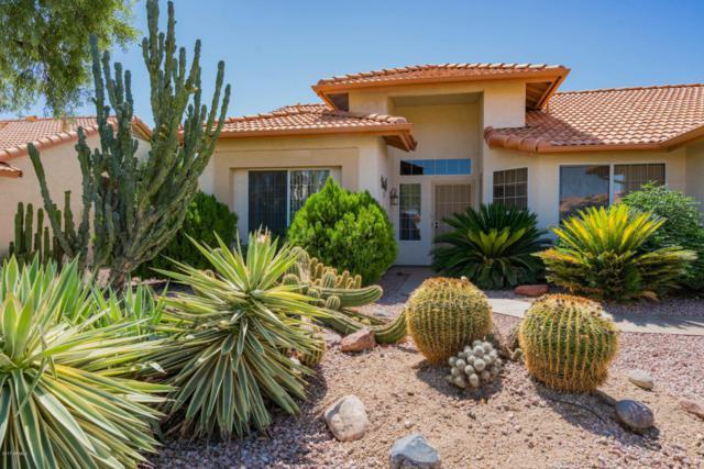 11031 W Yukon Drive, Sun City, AZ 85373 (MLS #5662943) :: Desert Home Premier